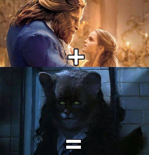 47-best-disney-memes-bbeauty-and-the-beast-harry-potter-copy