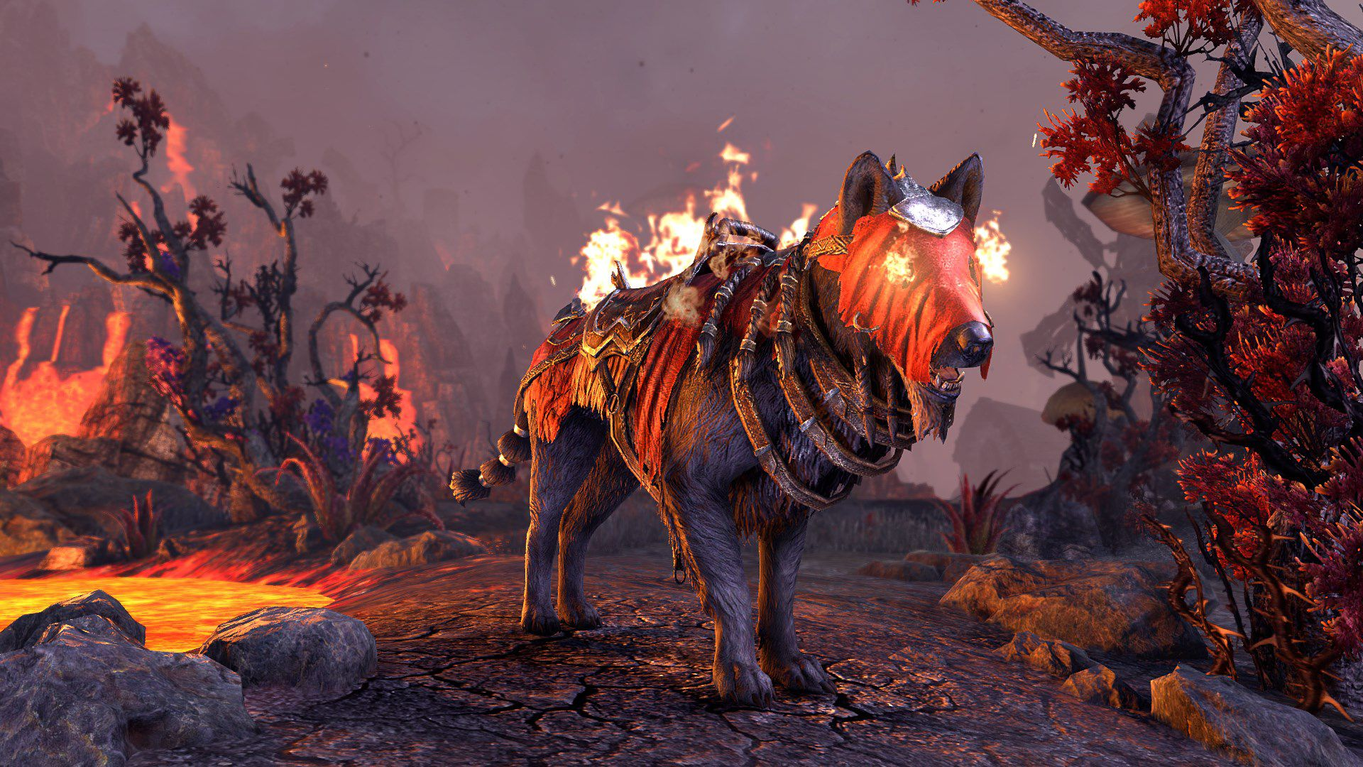 Dragonfire Wolf, Radiant Apex Mount, Scalecaller Crown Crate (image by Zenimax Online)