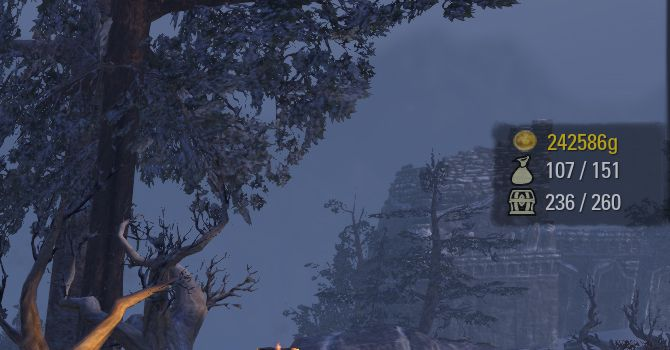 Bag Space Indicator by lordrichter, The Elder Scrolls Online Addon (image by @serpentaa)