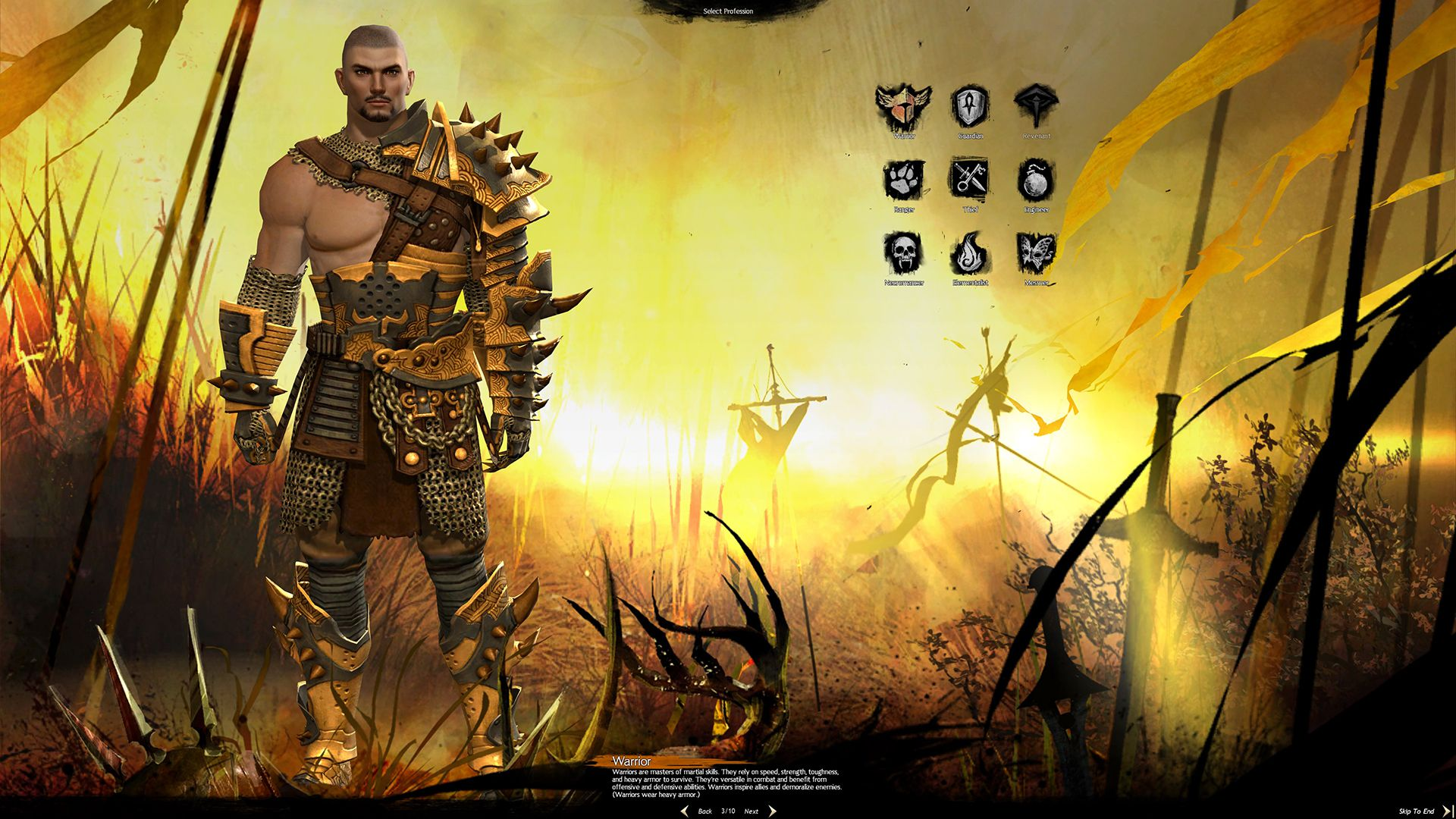 Human Male Warrior, Guild Wars 2 Class