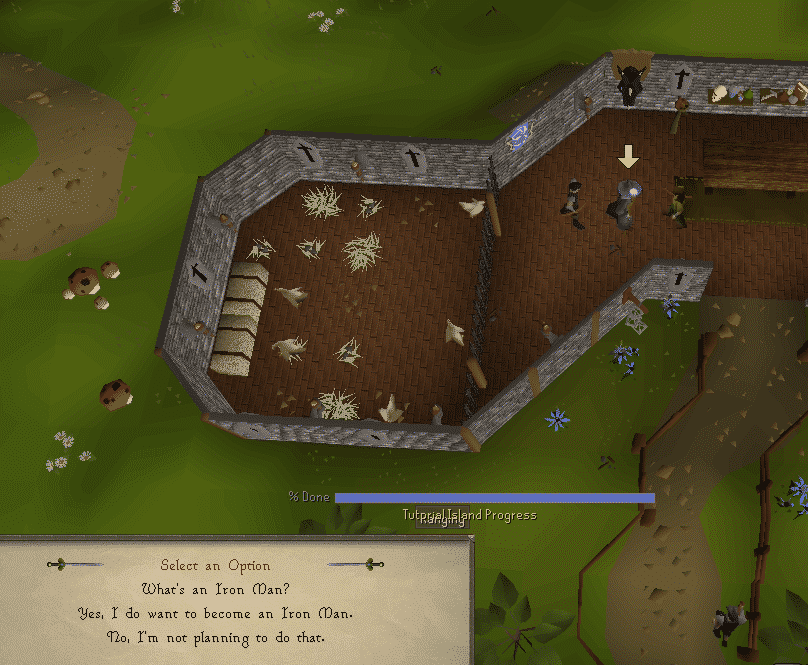 Ironman Question, Old School Runescape