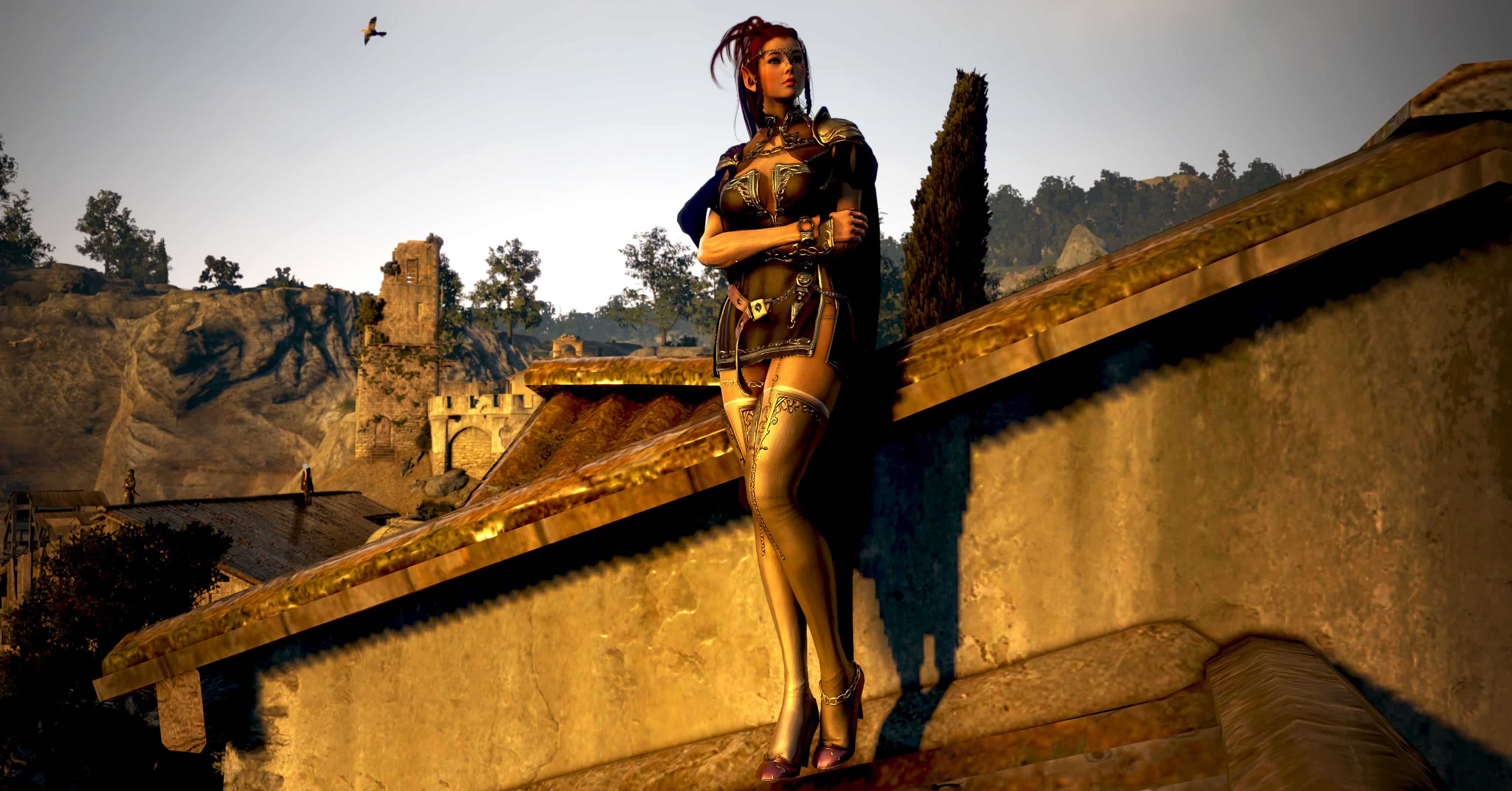 Player, Black Desert Online