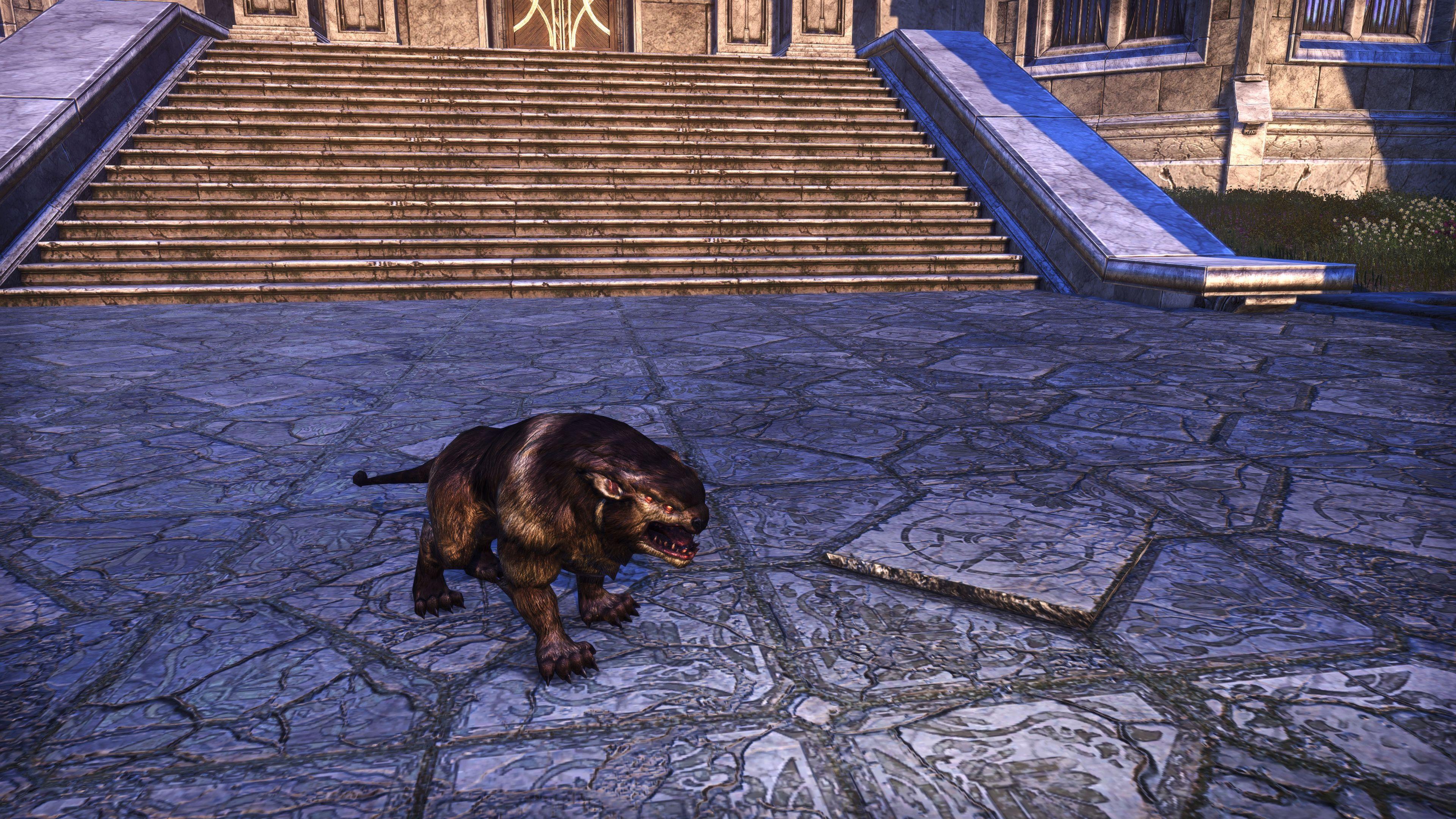 """Longhair Welwa """"Fell-Chaser"""" (Non-Combat Pet), Psijic Vault Crate, The Elder Scrolls Online"""