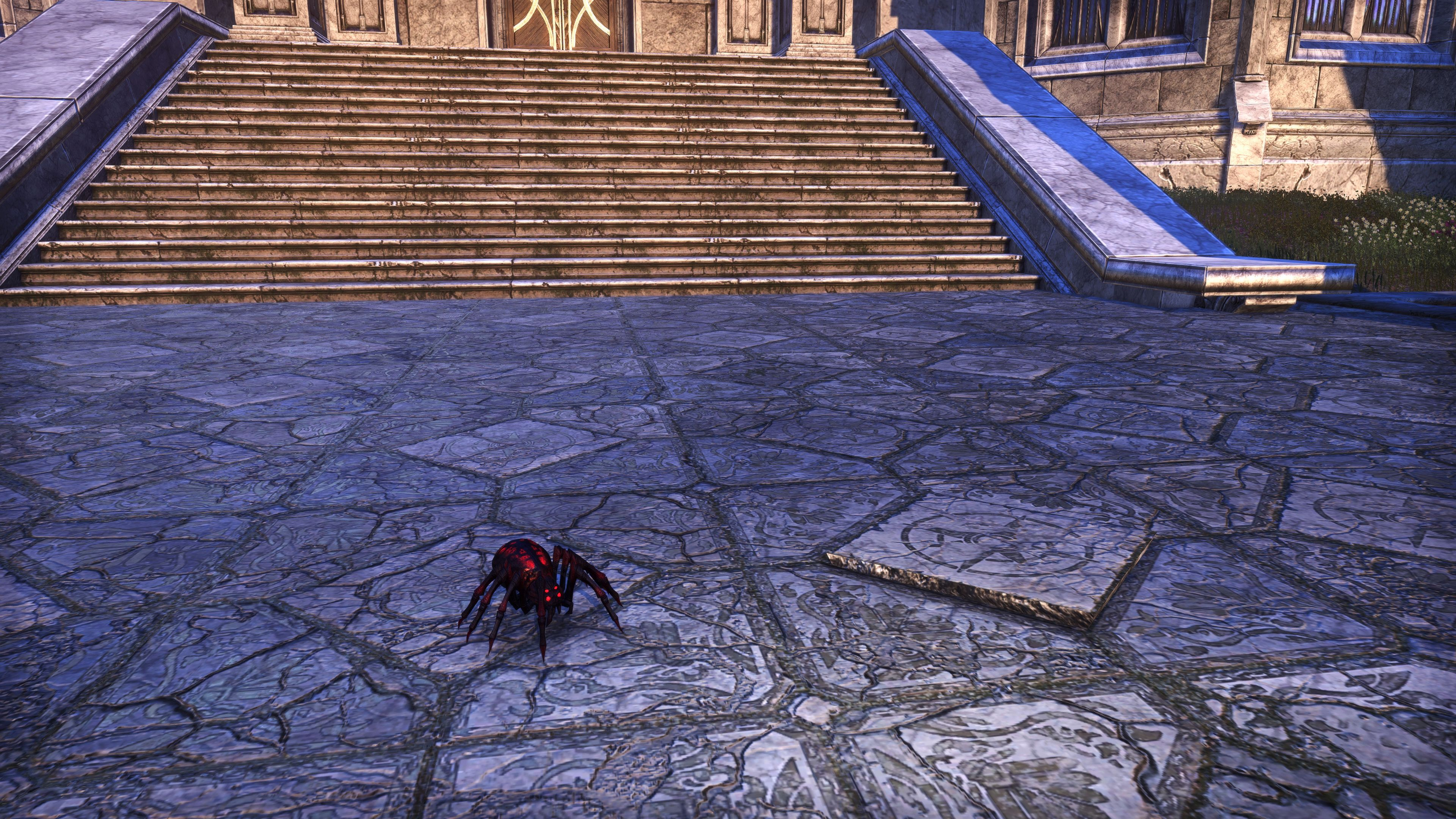 """Skein Spider """"Skittery"""" (Non-Combat Pet), Psijic Vault Crate, The Elder Scrolls Online"""