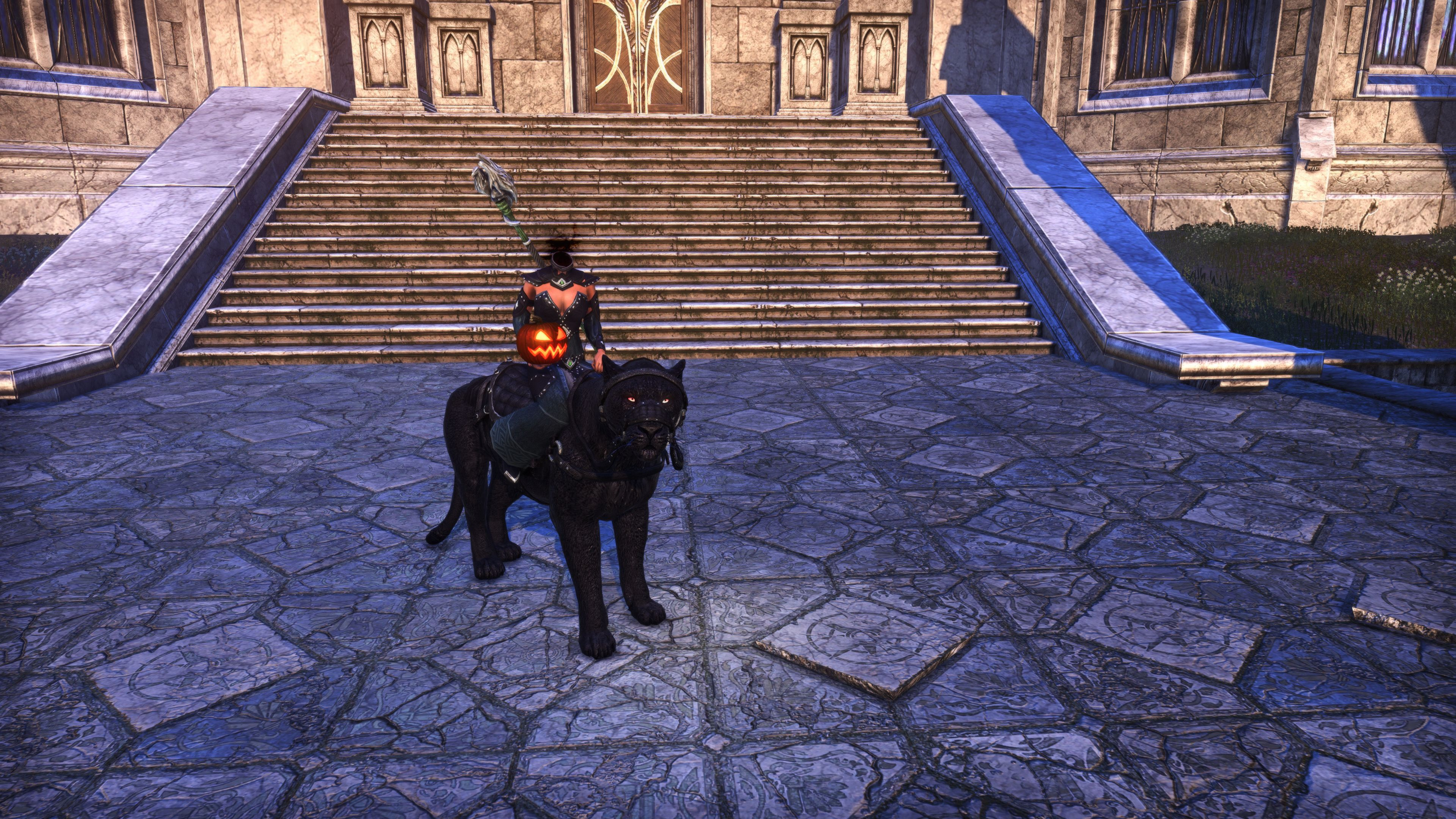 "Hollowjack Rider Senche ""Decapicat"" (Mount), Hollowjack Crown Crate, The Elder Scrolls Online"