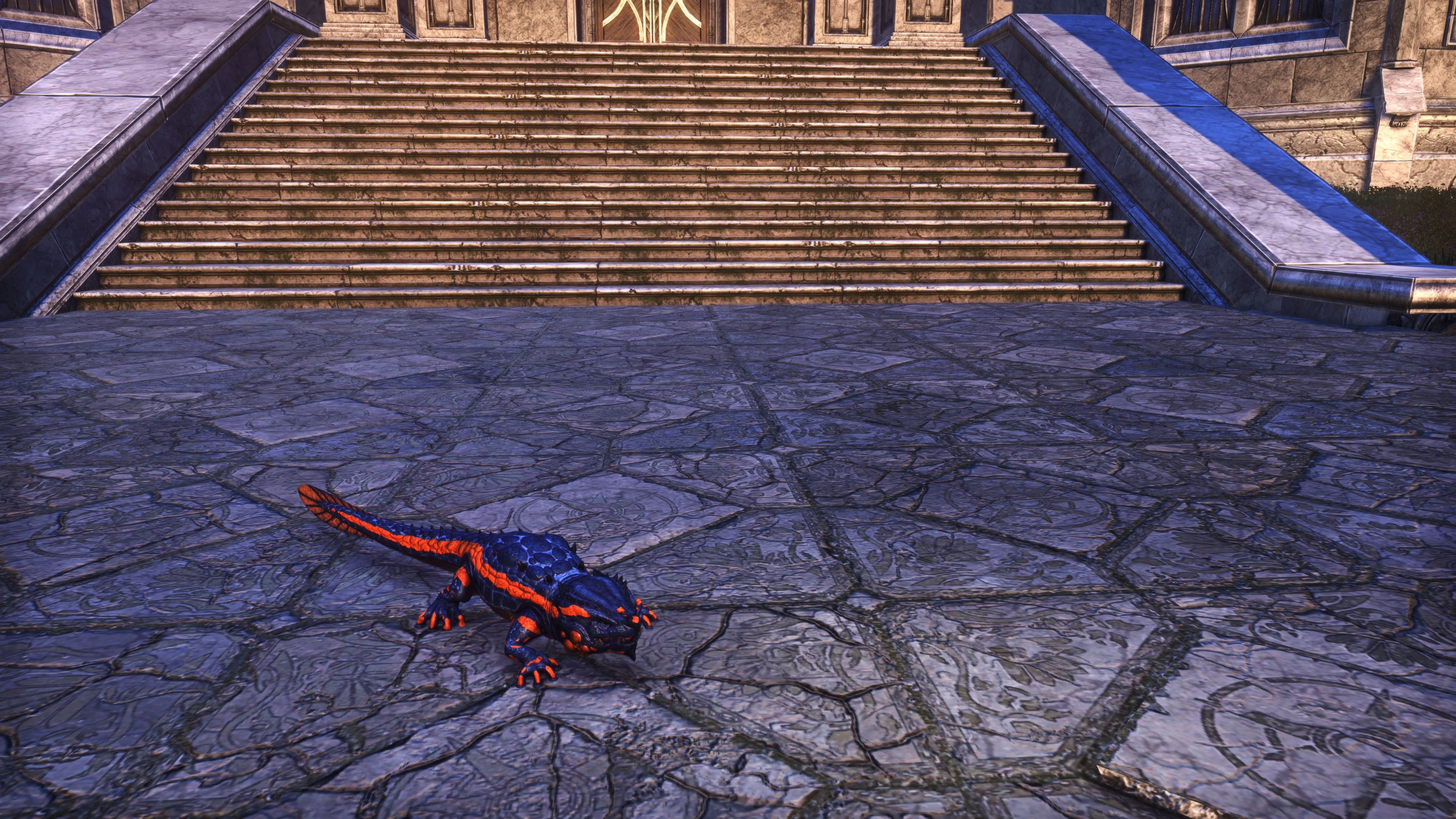 "Lava Line Salamander ""Newton"" (Non-Combat Pet), Hollowjack Crown Crate, The Elder Scrolls Online"