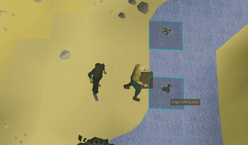 Cage Fishing Spot, Old School Runescape
