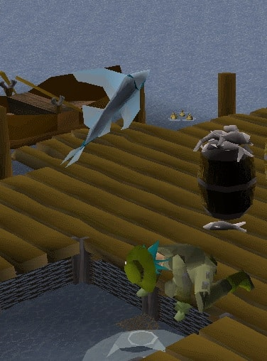 Catching Minrows, Old School Runescape
