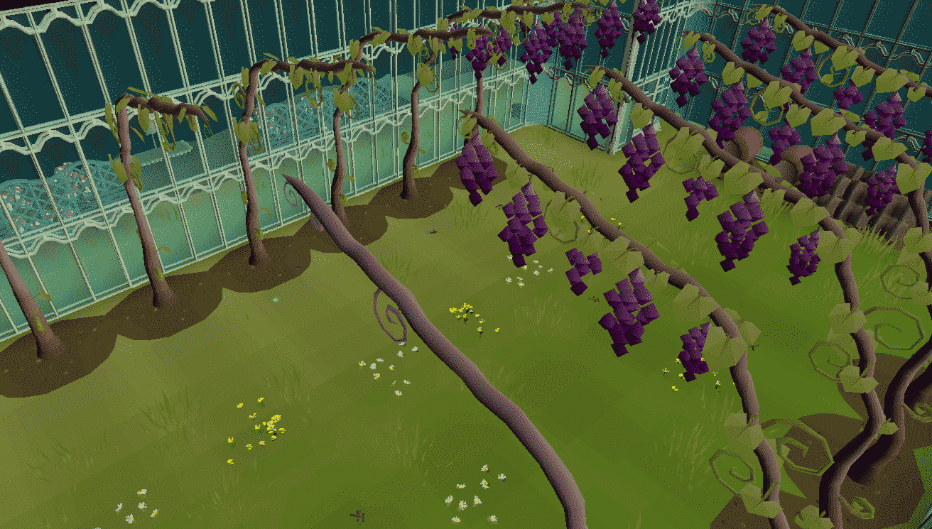 Grape Trees, Hosidius Vinery, Old School Runescape