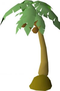 Palm Tree, Old School Runescape