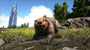 Castoroides, Ark: Survival Evolved