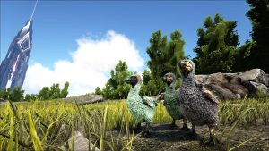 Dodo, Ark: Survival Evolved